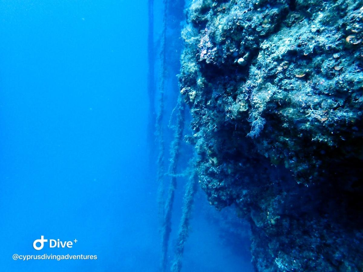 Part of the Wall at Jubilee Shoals