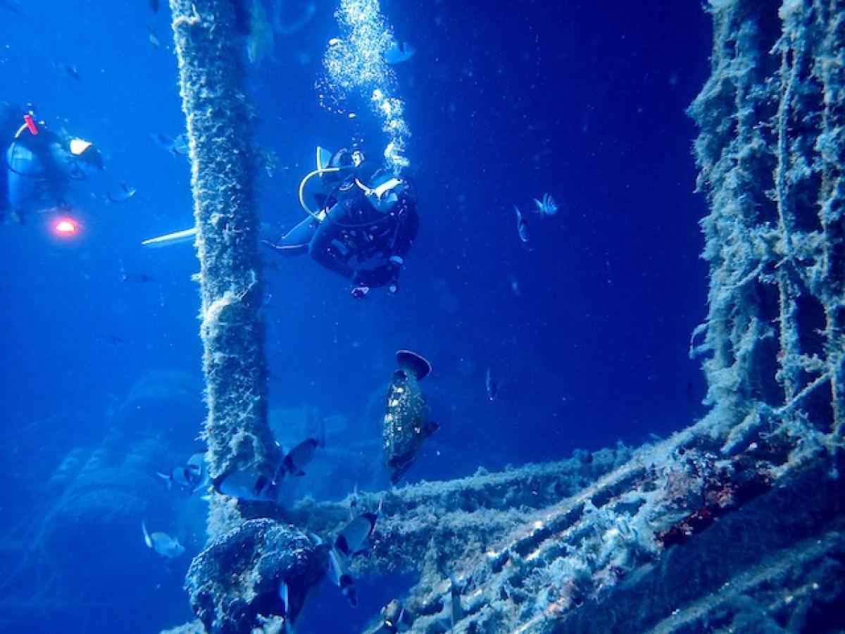 Diving between the Zenobia funnels