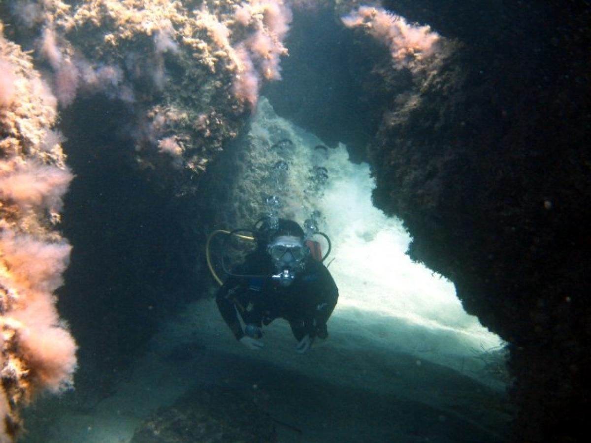 Manijin Island diving