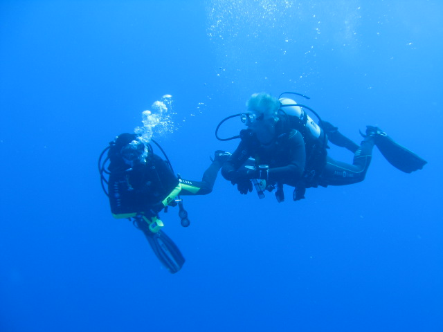 diving on the zenobia