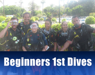 Beginners First Dives