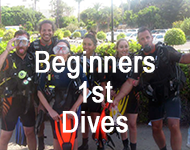 beginners dives in cyprus