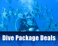 Dive Package Deals