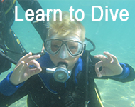 learn to scuba dive in cyprus