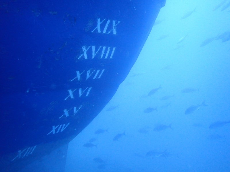 lower bow of the elpida wreck