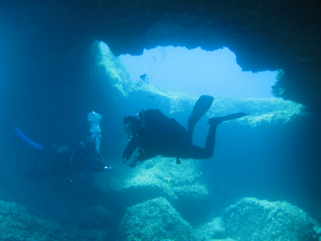 Divers in paphos