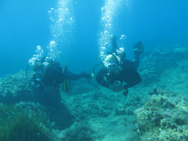 learn to dive with the padi open water diver course