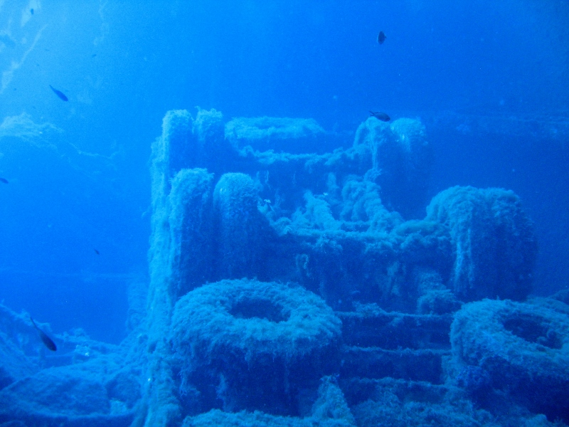 Lorries on the zenobia wreck