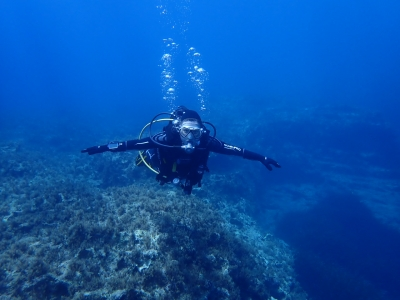 Diving for New and Experienced Divers
