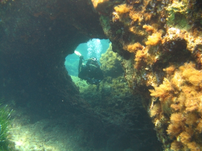 Try Diving - Discover the World of Scuba Diving